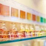 壁や床の色が子どもの行動を変える?!色彩の力を保育に活かそう!