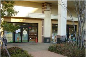 横浜西口保育園