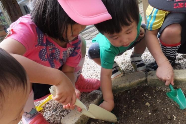 長崎おひさまの森保育園