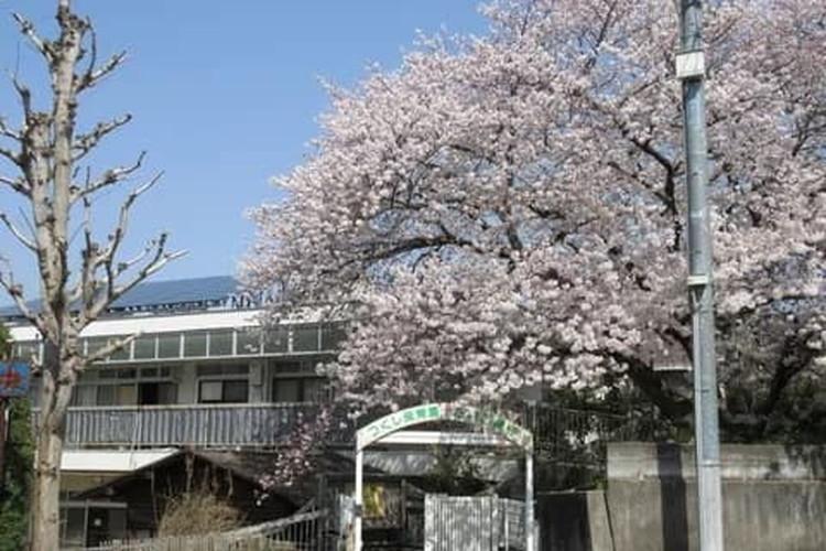つくし保育園(京都市伏見区)