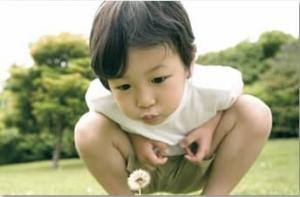野田市立清水保育所【こどもの森】